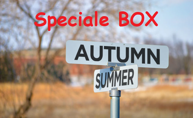 autumn boxes